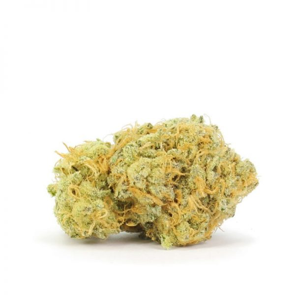 White Zombie Hybrid Weed Online